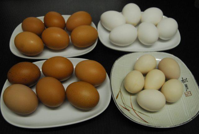 生卵4種類